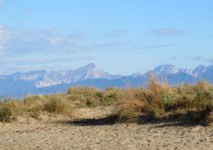marina-di-vecchiano dune
