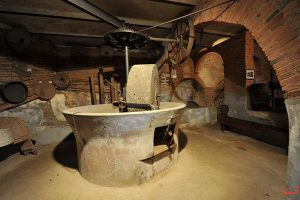 museo monte foscoli civiltà contadina