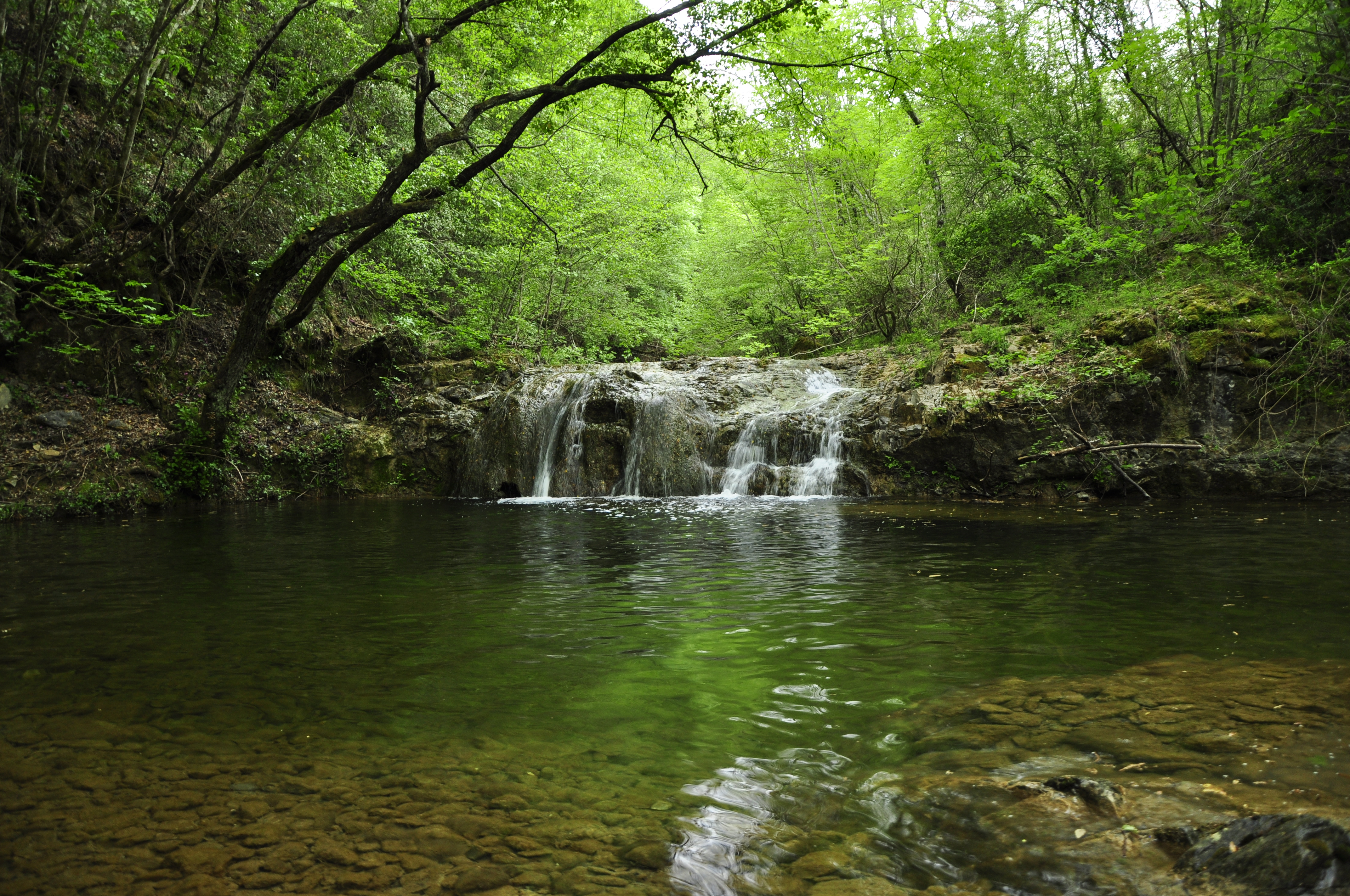 Pomarance e Volterra   Riserva Naturale del Berignone