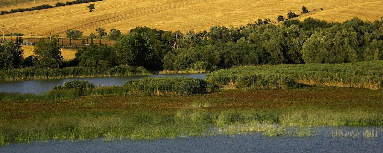 Lago di Santa Luce – Riserva Naturale LIPU