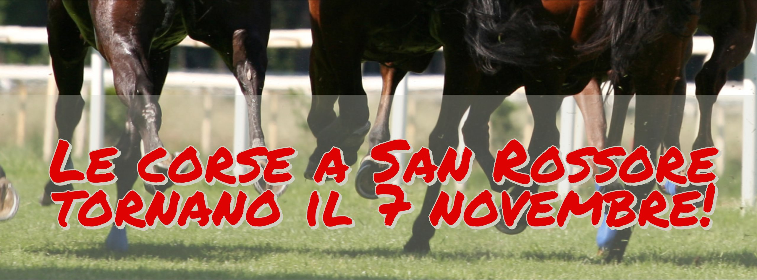 Racecourse season in the San Rossore Park | Pisa