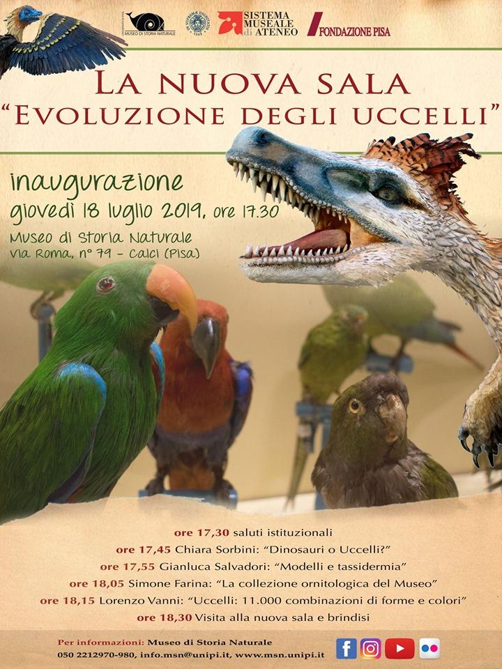 Mostre e aperture al Museo di Storia Naturale   Calci