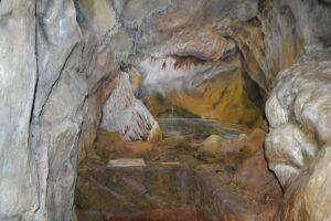 calci preistoria monte pisano mostra museo storia naturale