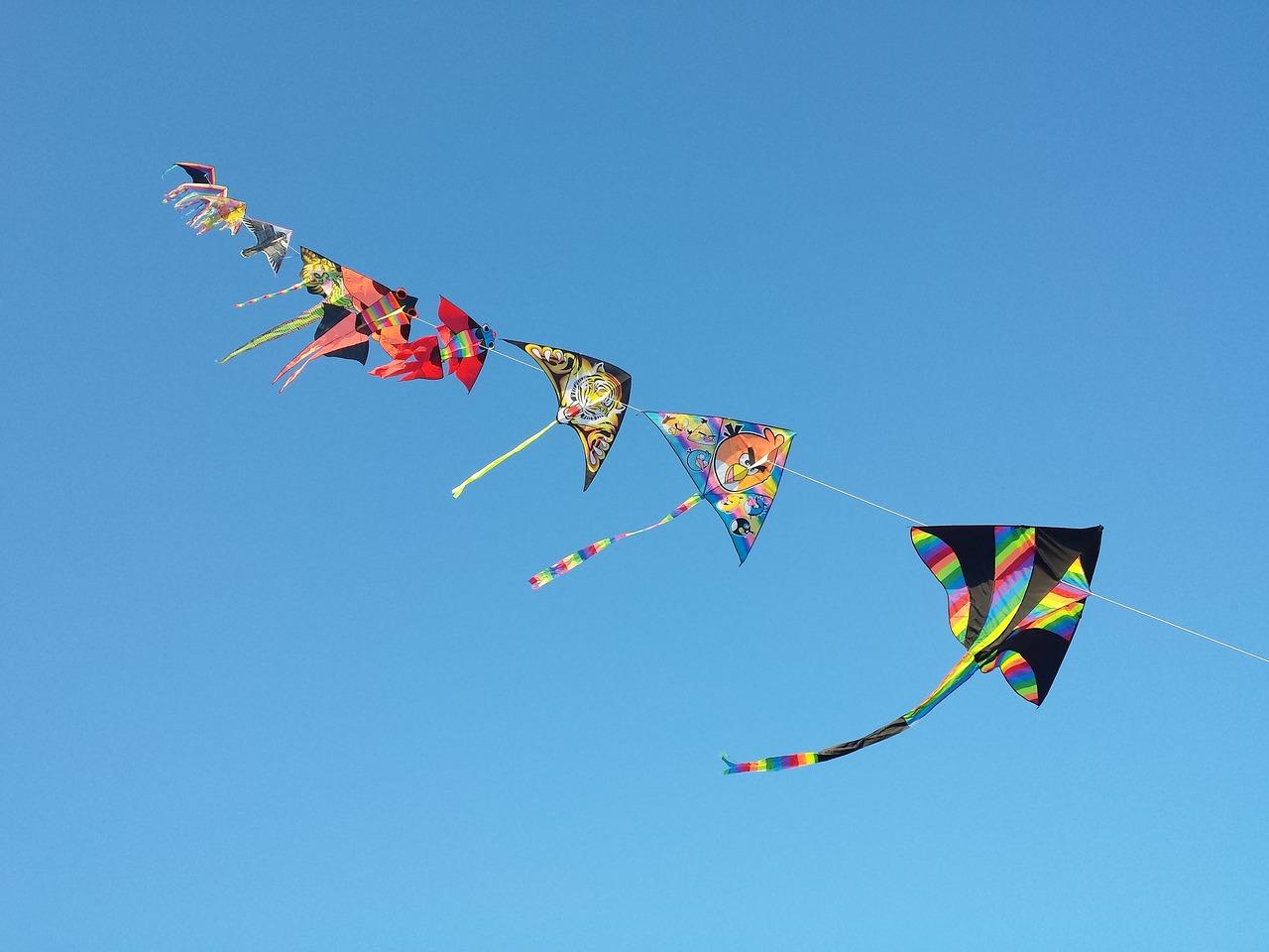 51st Kite Festival and 21st Flower Market Show