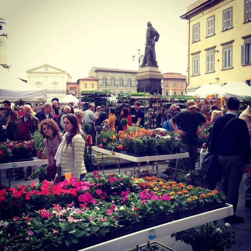 11° Fior di città – Pisa in fiore