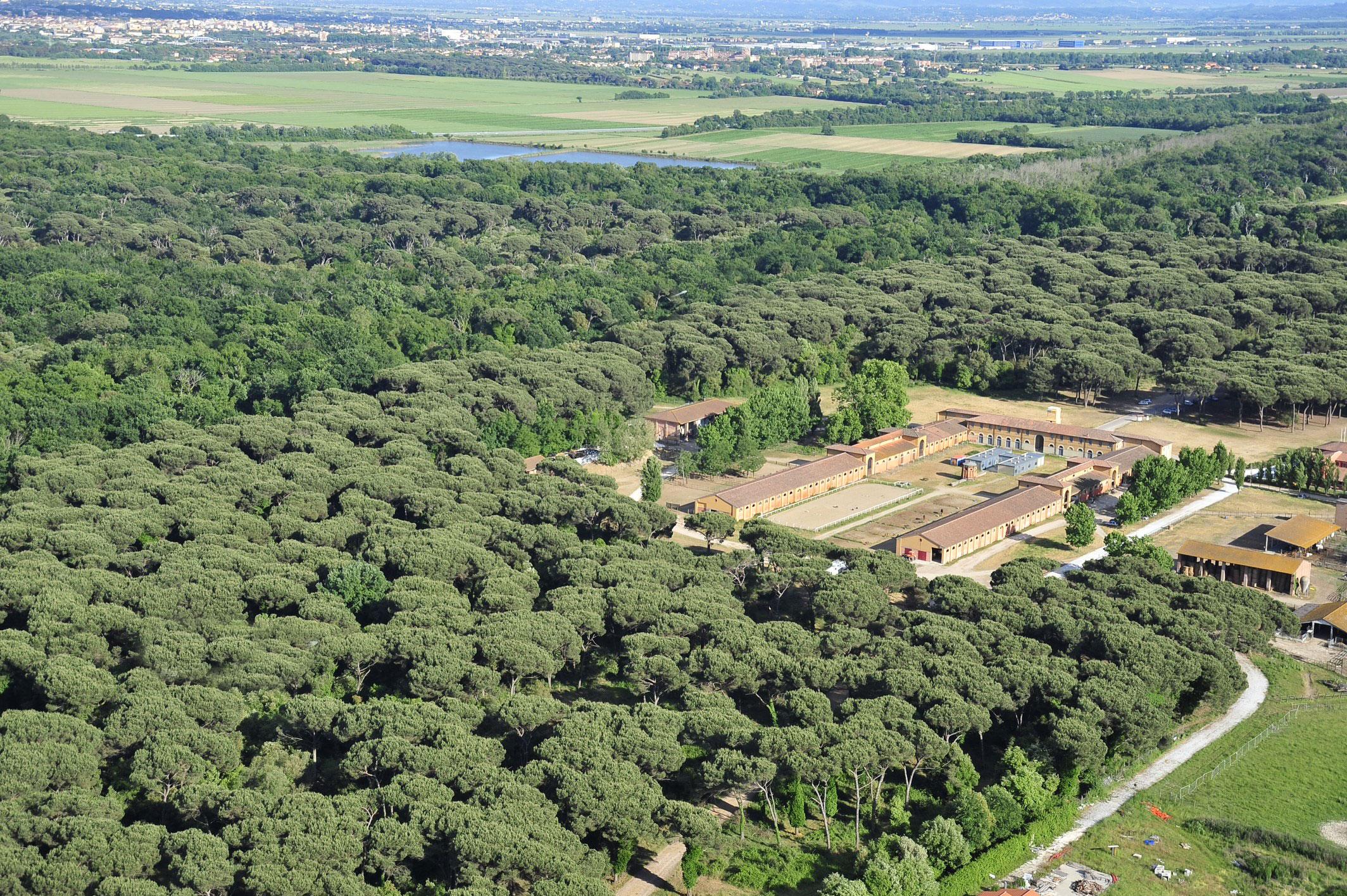 Parco di Migliarino San Rossore Massaciuccoli