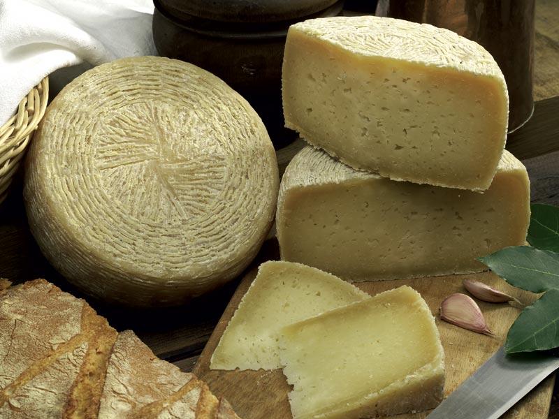 """Fare """"cheese"""" nelle terre di Pisa"""