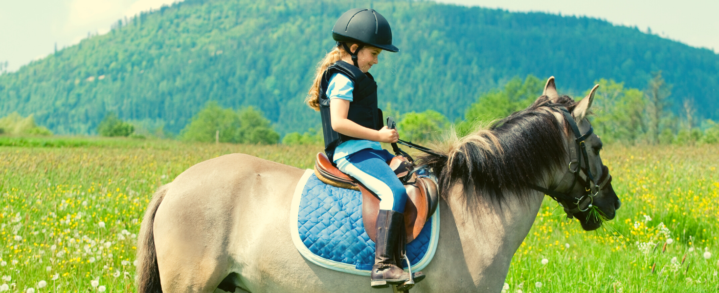 Horse riding routes in the Upper Val di Cecina