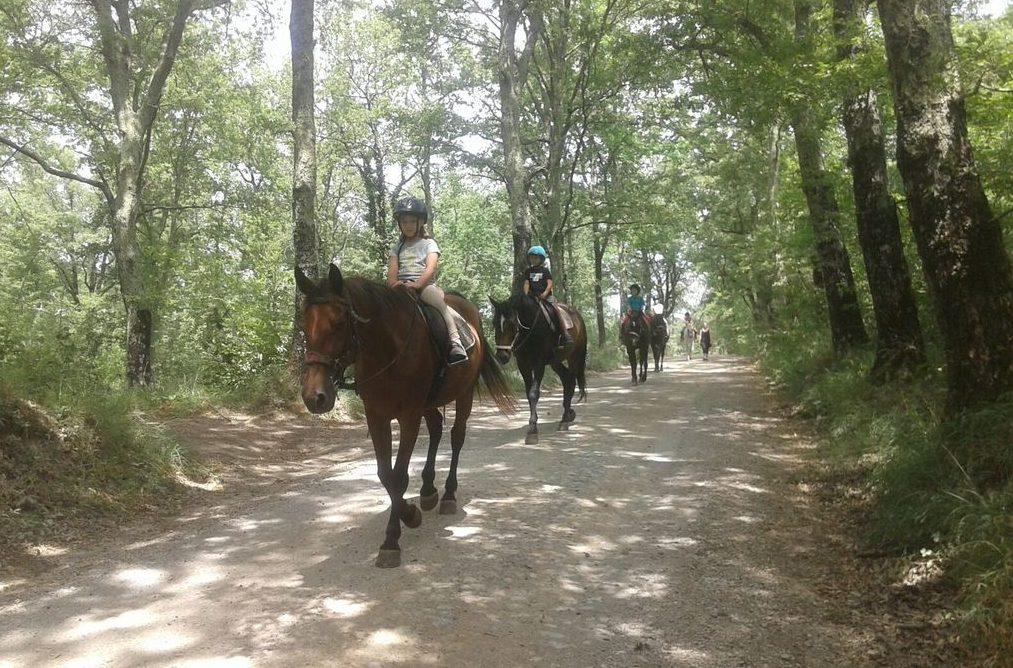 Itinerari a cavallo in Alta Val di Cecina