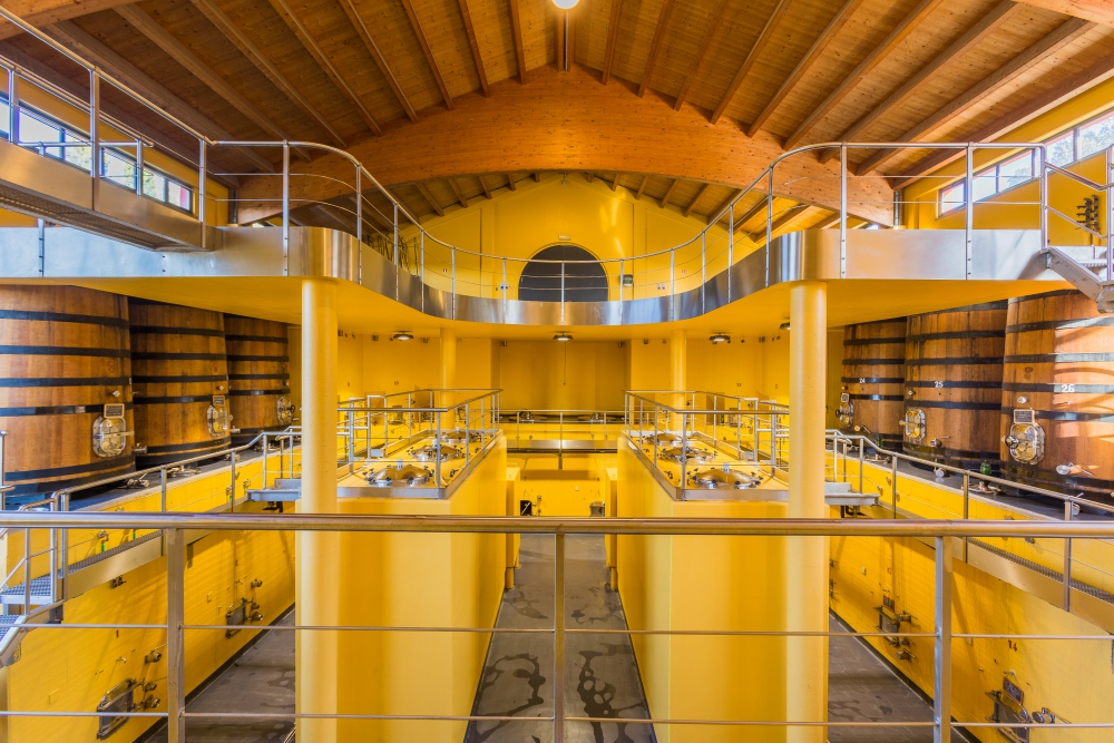 In Wine we truth – Wine Architecture | Riparbella