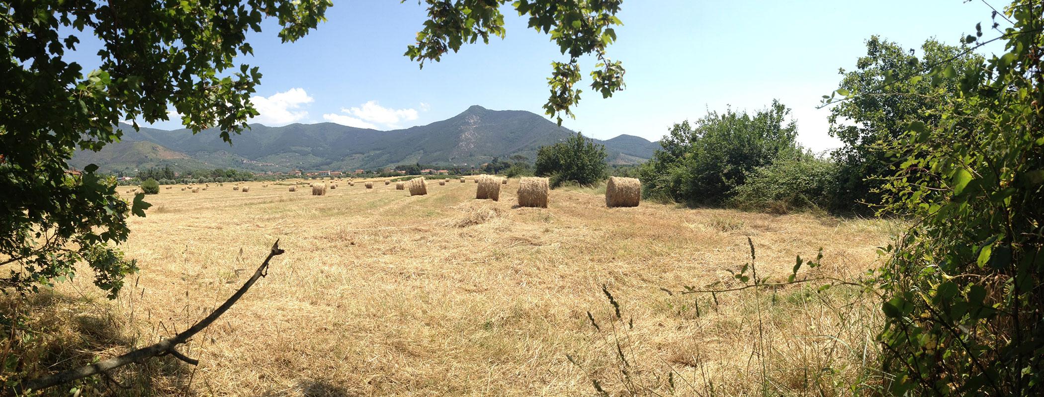 Itinerari natura in Val Graziosa – Calci