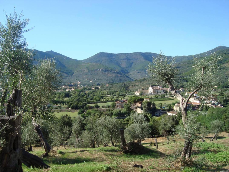 11° Via Erbosa | Calci e dintorni