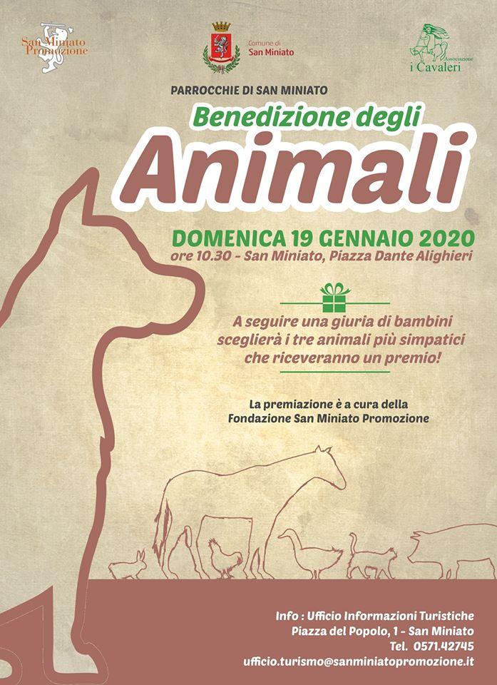 Benedizione degli animali | San Miniato