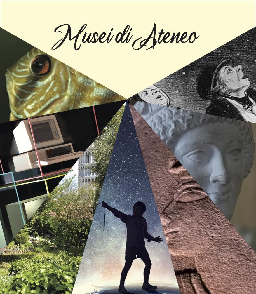 Apertura straordinaria dei Musei del Sistema di Ateneo | Pisa