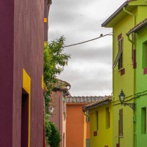 David Tremlett - Ghizzano | Terre di Pisa